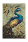 Peacock on Sage I Giclée premium par Tiffany Hakimipour