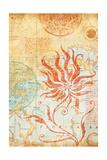 Map Wallflower II