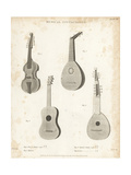 Viol D'Amour  Mandore  Spanish Guitar and Lute