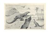 Hypsilophodon Foxii Dinosaurs and Flying Pterodactyls