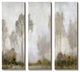 Misty Marsh I