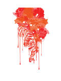 Painted Tiger Blood Red