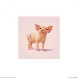 Petit cochon Reproduction d'art par John Butler Art