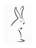 Zen Snow Bunny