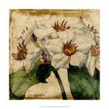 Vibrant Floral VI
