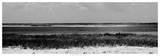 Shore Panorama IV