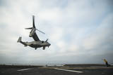 An MV-22 Osprey Is Guided onto the Flight Deck of USS Boxer