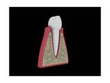 Conceptual Image of Human Tooth