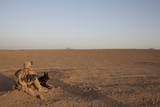 A Dog Handler with the US Marine Corps Takes a Break