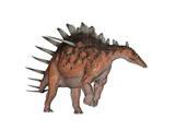 Kentrosaurus Dinosaur  White Background