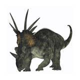 Styracosaurus  a Herbivorous Ceratopsian Dinosaur