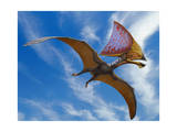 Tupandactylus Imperator  a Pterosaur from the Early Cretaceous Period