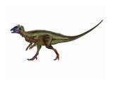 Hypsilophodon Is an Ornithopod Dinosaur from the Cretaceous Period
