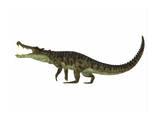Kaprosuchus Is an Extinct Genus of Crocodile