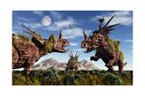 Styracosaurus Dinosaur Sculptures