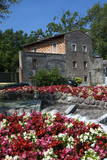 Floral Display at Bardolino  Lake Garda  Italian Lakes  Lombardy  Italy  Europe