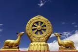 A Golden Dharma Wheel and Deer Sculptures