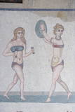 Mosaic of Girls in Bikinis