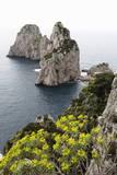 The Rugged Faraglioni Rocks in Capri  Campania  Italy  Mediterranean  Europe