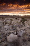 Landscape  Joshua Tree National Park  California  United States of America  North America