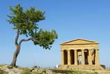 Concordia Temple