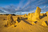 The Pinnacles Limestone Formations at Sunset in Nambung National Park