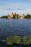 Island Castle of Trakai Near Vilnius  Lithuania  Europe