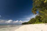 Anse Severe Beach  La Digue  Seychelles  Indian Ocean  Africa