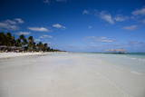 Cayo Coco Island  Ciego De Avila Province  Cuba  West Indies  Caribbean  Central America
