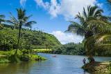 Wailua River Kauai  Hawaii  United States of America  Pacific
