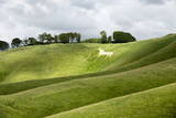 White Horse  the Cherhill Downs  Wiltshire  England  United Kingdom  Europe
