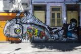 Graffiti Art Work on Houses in Lapa  Rio De Janeiro  Brazil  South America
