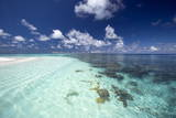 Tropical Lagoon and Coral Reef  Baa Atoll  Maldives  Indian Ocean  Asia