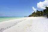 Bwejuu Beach  Zanzibar  Tanzania  East Africa  Africa