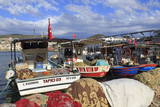 Fishing Boats in Kusadasi  Aydin Province  Anatolia  Turkey  Asia Minor  Eurasia