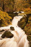 The Waters of Dob Gill in the Lake District in Full Flow after Heavy Autumn Rainfall