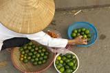 Lemon Seller  Market in the Old Quarter  Hanoi  Vietnam  Indochina  Southeast Asia  Asia