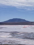Laguna Colorada (Red Lake) Encrusted