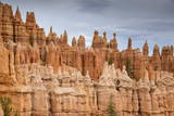 Bryce Canyon at Dawn