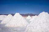 Salt Mounds Extracted from Salt Plains  Salar De Uyuni  Colchani  Bolivia  South America