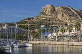 Marina and Castle  Alicante  Spain  Mediterranean  Europe
