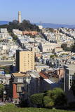 Lombard Street  San Francisco  California  United States of America  North America