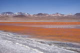 Laguna Colorada (Red Lagoon) Encrusted