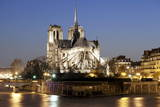 Notre Dame Cathedral and River Seine at Night  Paris  Ile De France  France  Europe