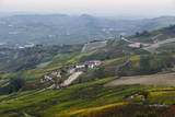 Vineyards Near La Morra  Langhe  Cuneo District  Piedmont  Italy  Europe