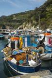 Cetara  Amalfi Coast  UNESCO World Heritage Site  Campania  Italy  Mediterranean  Europe