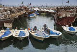 Fishing Boats and Dhows in the Old Ships Port  Kuwait City  Kuwait  Middle East