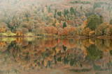 Autumn Colours Reflected in Grasmere Lake in the Lake District National Park