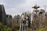 Limestone Pinnacles in Shilin  Stone Forest  at Lunan  Yunnan  China  Asia