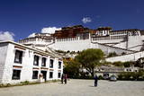The Potala Palace  UNESCO World Heritage Site  Lhasa  Tibet  China  Asia